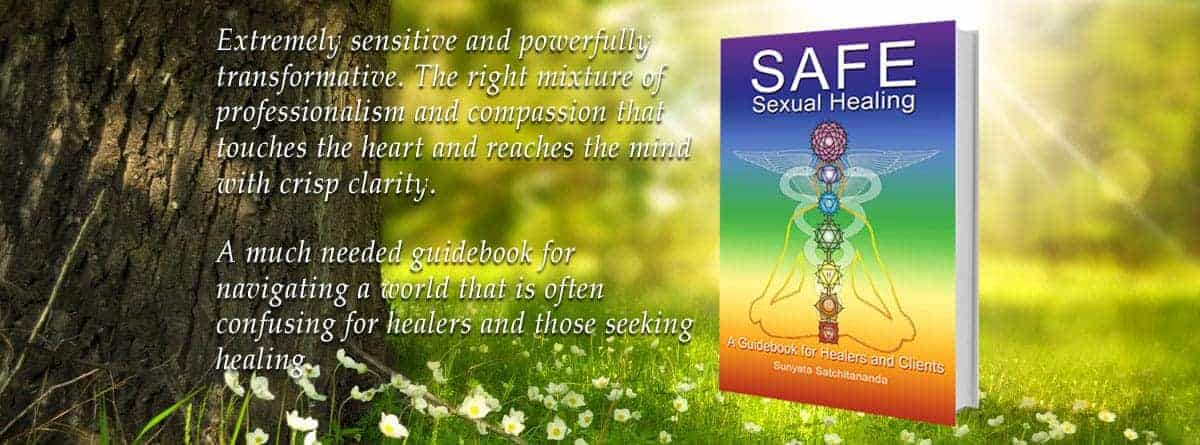 Safe Sexual Healing book reviews
